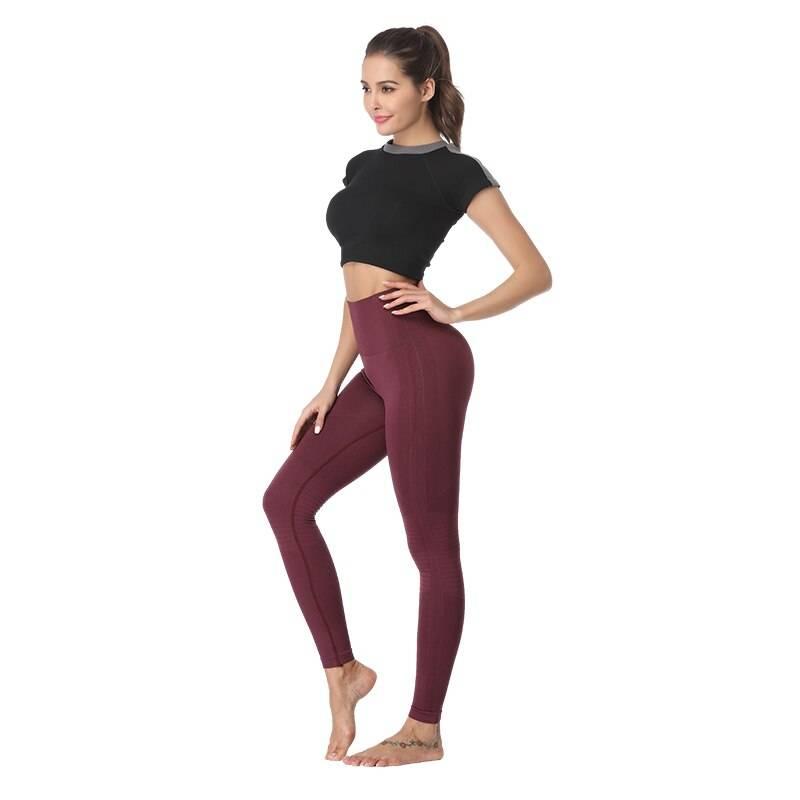 Seamless Fitness Leggings for Women Womens Clothing Leggings