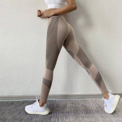 Seamless Sports Leggings for Women Womens Clothing Leggings